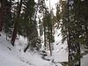 Past Vivian Creek Camp