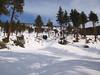 South Facing slopes between Vivian Creek Camp and Halfway Camp