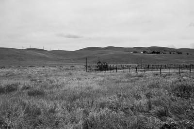 Farm. Patterson Pass Road. Livermore, CA, USA