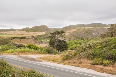 HDR Composition. Near Panther Beach - Santa Cruz, CA