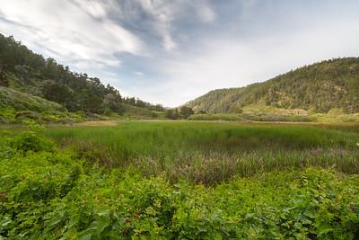 Skyline-to-the-Sea Trail. Big Basin State Park, CA, USA