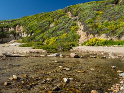 Liddell Creek. Bonny Doon Beach. Santa Cruz, CA, USA