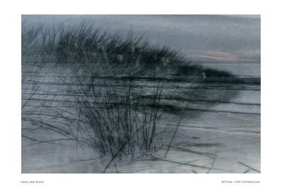 Grass and Beach