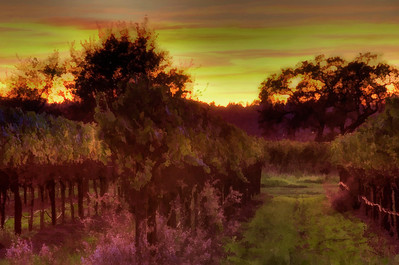 vineyard-sunset-painting-2