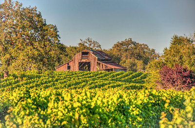 california-wine-vineyard-barn