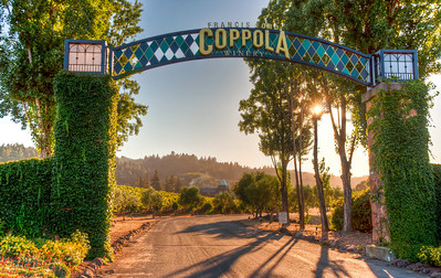coppola-winery-vineyards
