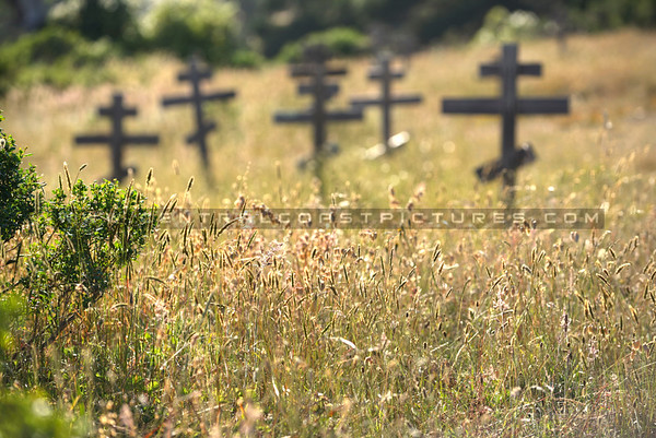 norcal-crosses-2539