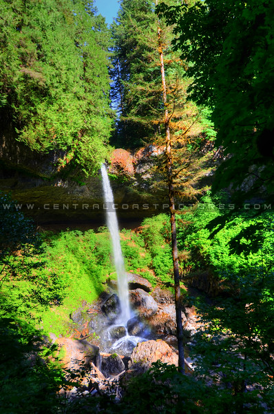 silver-falls-cave-oregon_5876