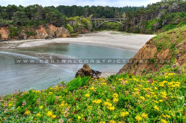 russion gulch norcal-beach-bridge_0919