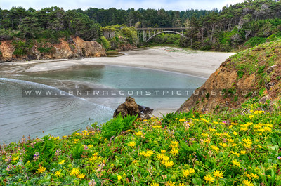 russion gulch norcal-beach-bridge_0919