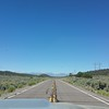 Nevada Route 359 approaching California. The  Sierra Nevada mountains loom in the distance.  (Meredith)