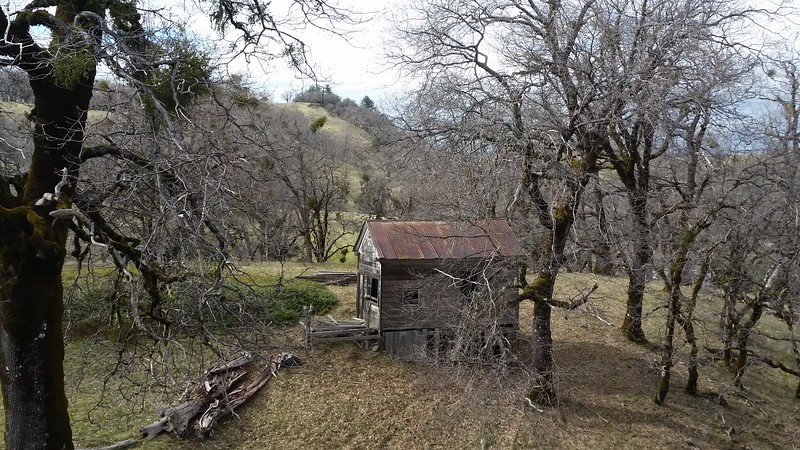 Old cabin on Belle Springs Road