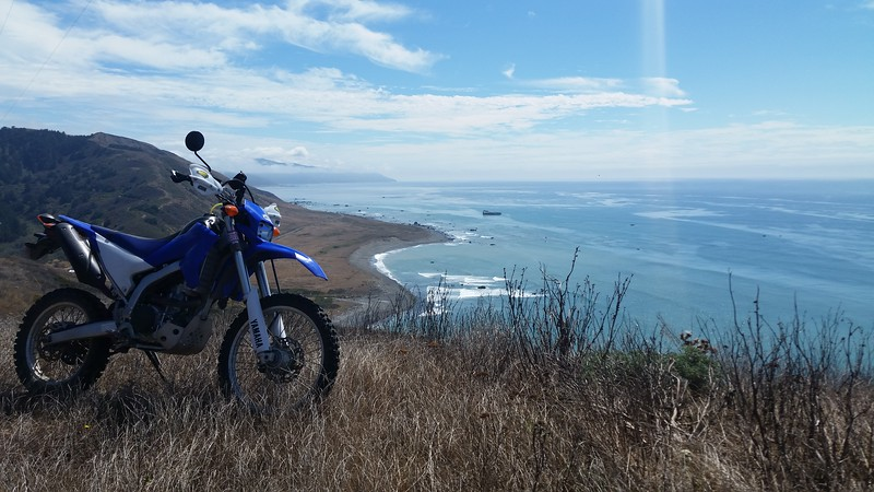 Overlooking the ocean from a goat trail off Mattole Road.