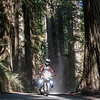 """We hosted Linis and Asta, from Lithuania, who are riding around the world over 18 months on motorcycles.  They are about 260 days into their journey now.  They spent a night with us and then we rode together a bit the next day. <br />  <br /> <br /> Follow their adventure at  <a href=""""http://www.2wheeledadventures.com"""">http://www.2wheeledadventures.com</a><br /> <br /> My pic of Asta"""