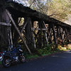 "Another old railroad trestle for the 'Arcata and Mad River RR"" near Blue Lake, just past the other one"