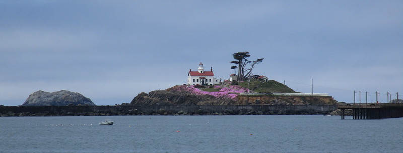 Lighthouse in Crescent City harbor, with (possibly) lilacs in bloom (?)