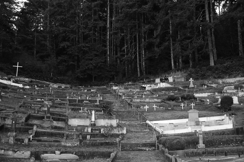 St Mary's Catholic cemetery near Ferndale