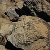 Patterns in the rocks on the beach near Petrolia.