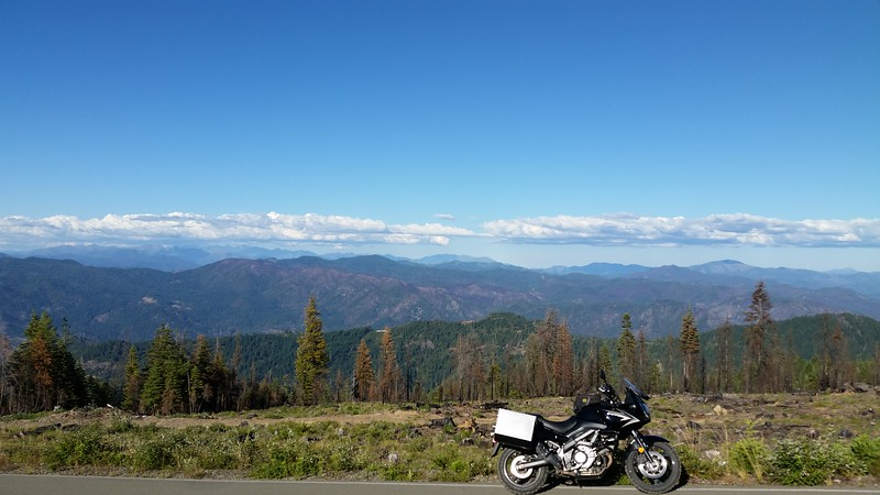 On top of South Fork Mountain on NF Rt 1, looking east.  6,000 feet.