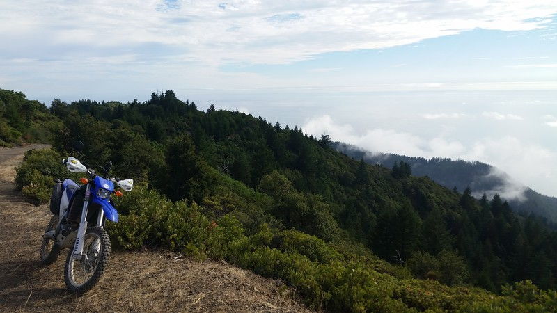 Overlooking the ocean from Saddle Mountain Road.