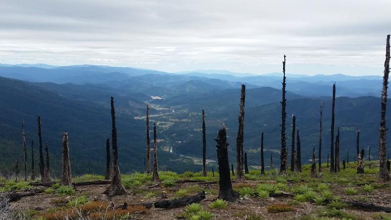 Pickett Peak lookout