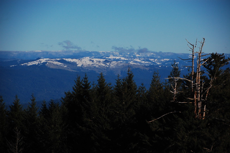 Ocean views and snowy mountains from Upper Bear River Road.