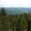 View from the top of the fire tower at Pickett Peak