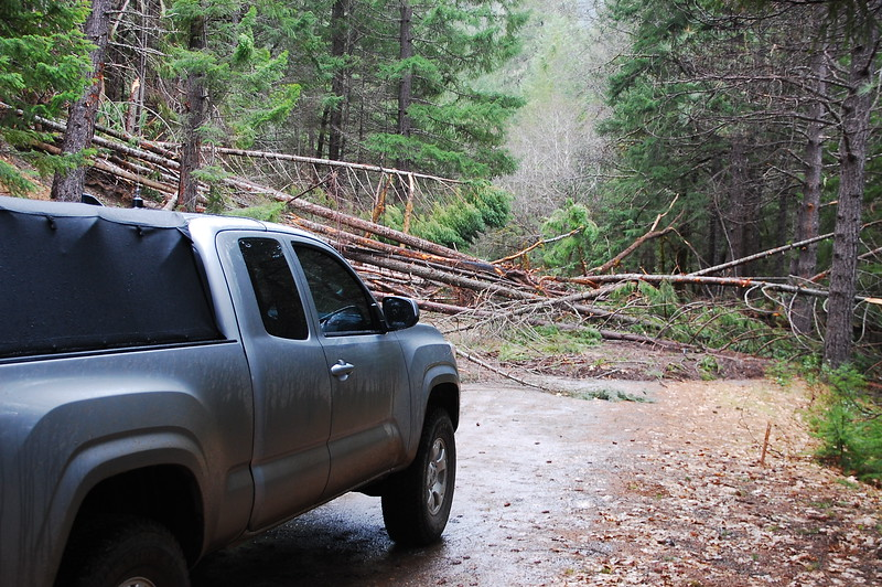 Landslide across a NF route near Mad River