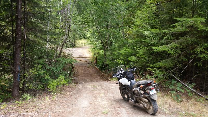 Logging road gated shut near Fort Bragg