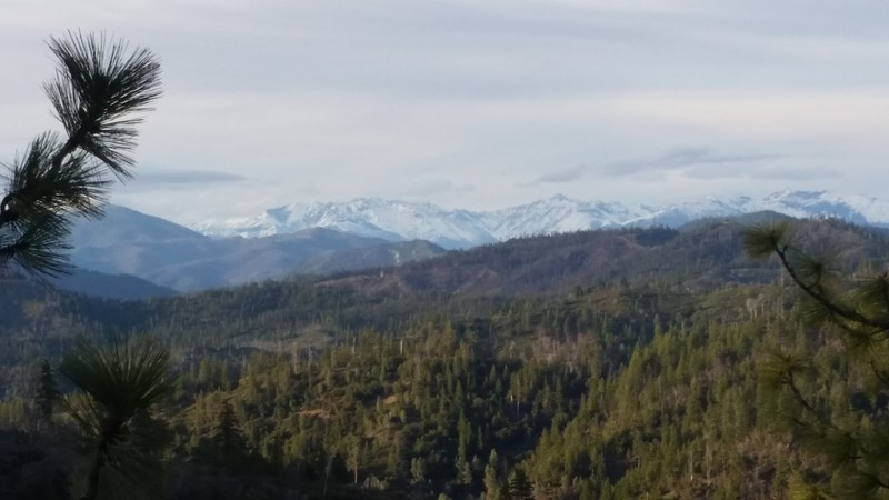 View of the Trinity Alps from Hwy 36 near Forest Glen