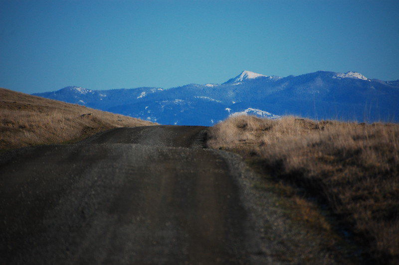 Upper Bear River Rd heading into the mountains...
