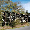 "Old railroad trestle for the 'Arcata and Mad River RR"" near Blue Lake"