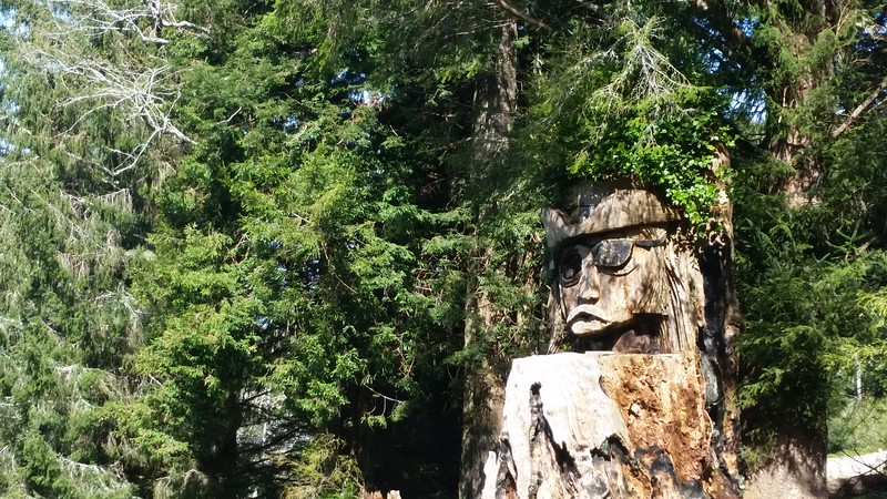 Redwood stump art on Fickle Hill Rd near Arcata