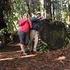 Heart shaped log in the Prairie Creek Redwoods