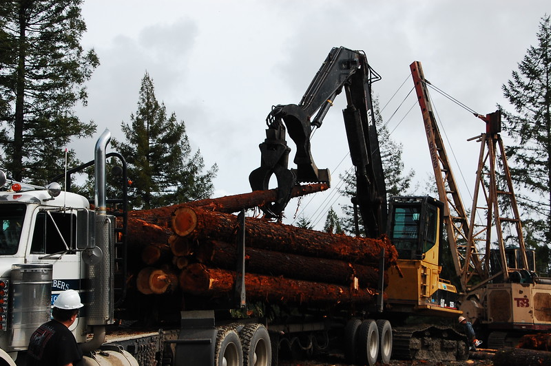 Logging operations on Redwood House Road.  They shut the whole road down while they are dragging trees up the mountain.