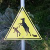 Warning signs are in abundance in California.  Some aren't as obvious as maybe they should be.