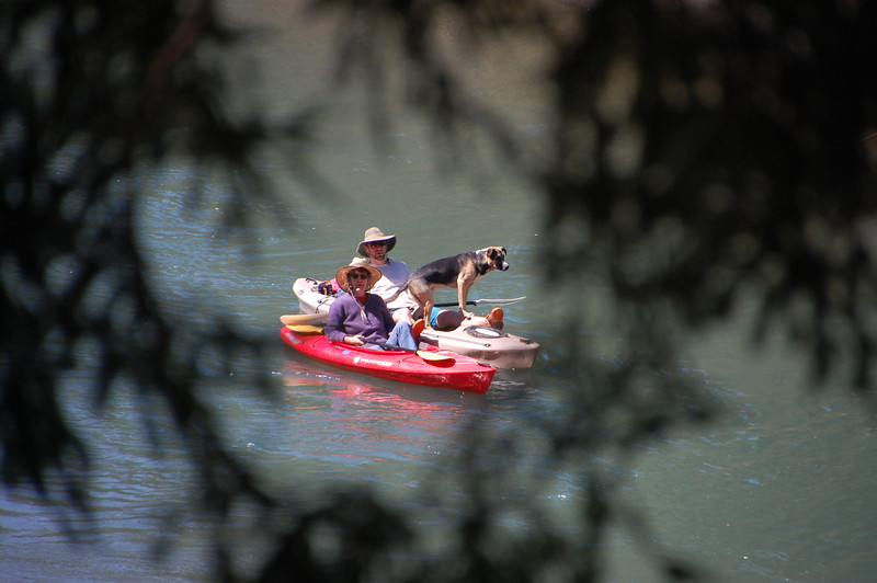 Kayakers on the Eel River.