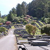 """The cemetery in Ferndale is built into a hillside.  I assume that this is because the fertile """"flat"""" area of the valley is more valuable for farming than it is for planting dead people."""