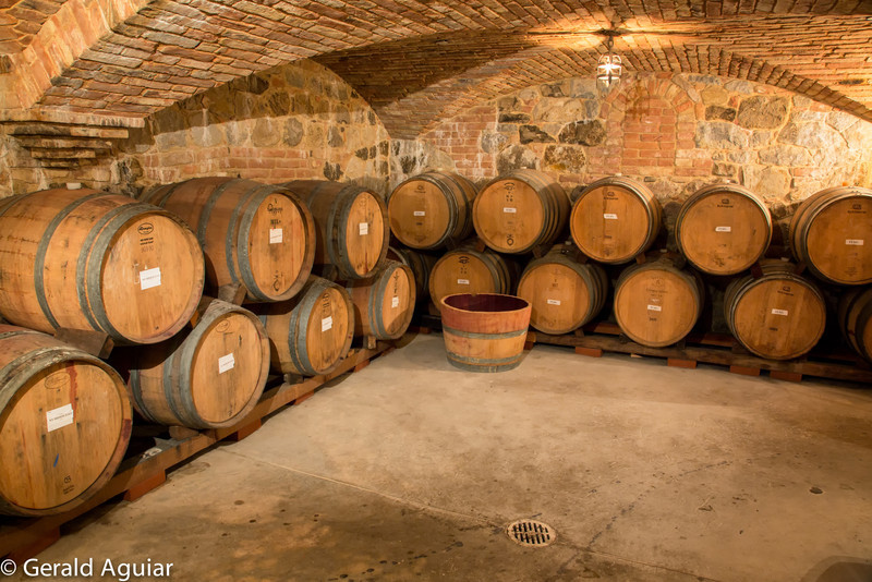 The wind cellars were massive.  Check out the old bricks on the walls and ceiling.  This was taken with natural or ambient light.