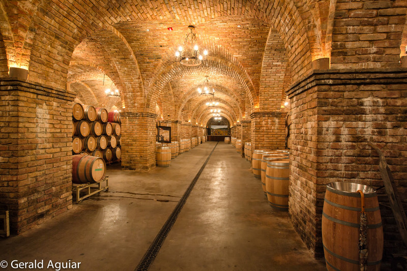 This was the largest room containing the barrels of wine.  It had to be several hundred feet long.  Again check out the brick work in the arches and ceiling.