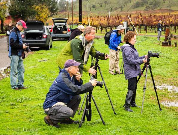 Another candid shot taken by Jeff of the group taking some shots of a vineyard.  He was kind enough to send it to me.
