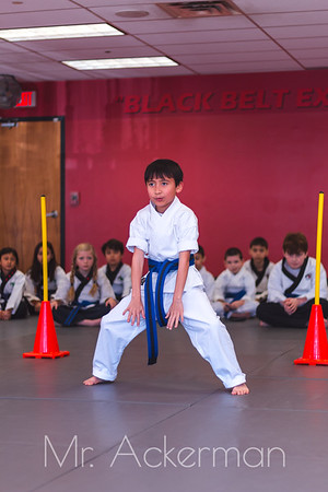Callahans Karate Forms Tournament 2019 - Purple - Blue