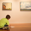 Alex Hillyard, 12, from Clymer Central School, draws during his class field trip at Fowler-Kellog Art Center on June 19 2017. CAM BUKER/STAFF PHOTOGRAPHER