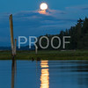 Full Moon Rising in Camano Island