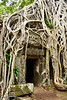 Ta Prohm door
