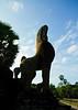 Angkor Lions