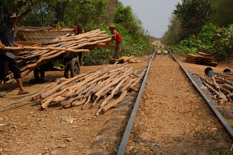 The wood just received by bamboo train is loaded onto carts for distribution.