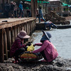 Cham women inspecting their dailey catch of crab