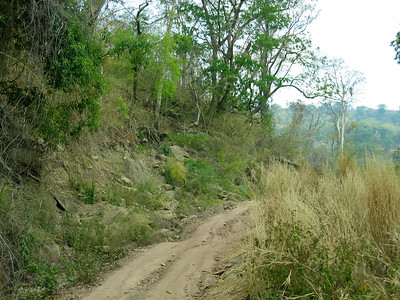 Preah Vihear, 2004