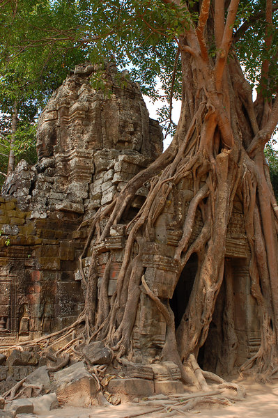 Ta Som Temple sitting in the Cambodian jungle